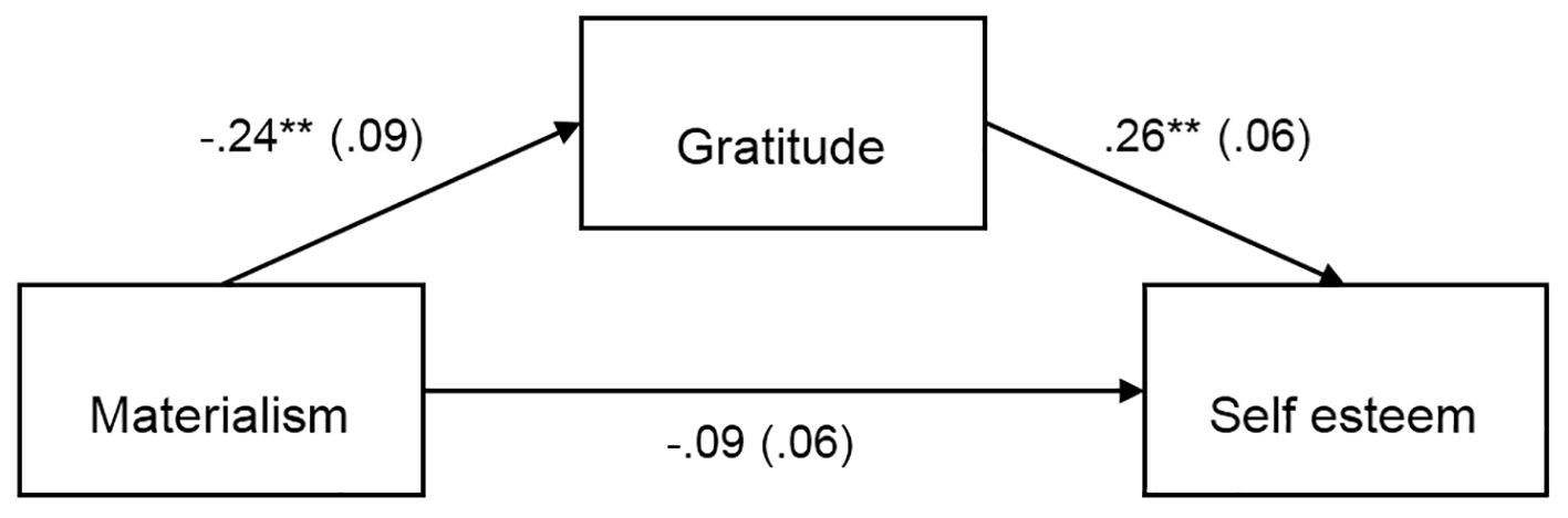 Associations Between Materialism, Gratitude, and Well-Being